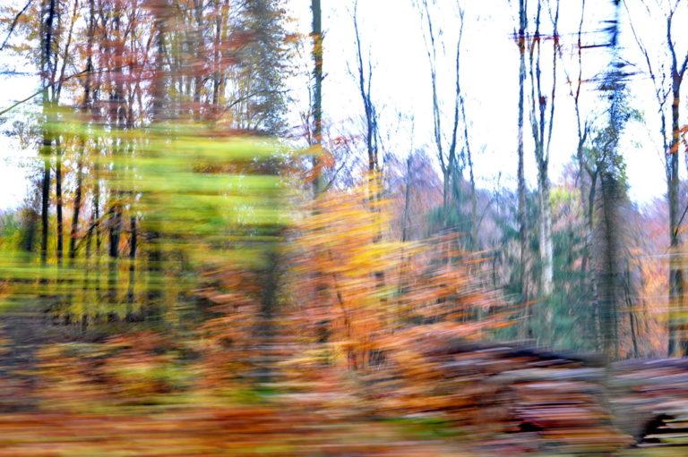 Schnell kommt der Herbst