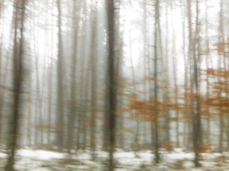Die Winterfahrt